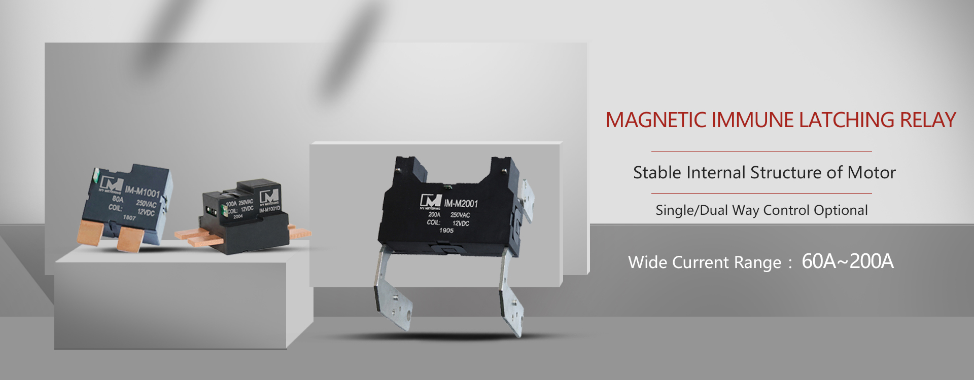 Magnetic Immune latching Relay