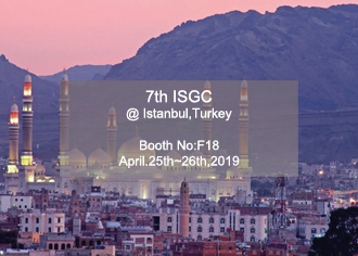 ICSG 2019