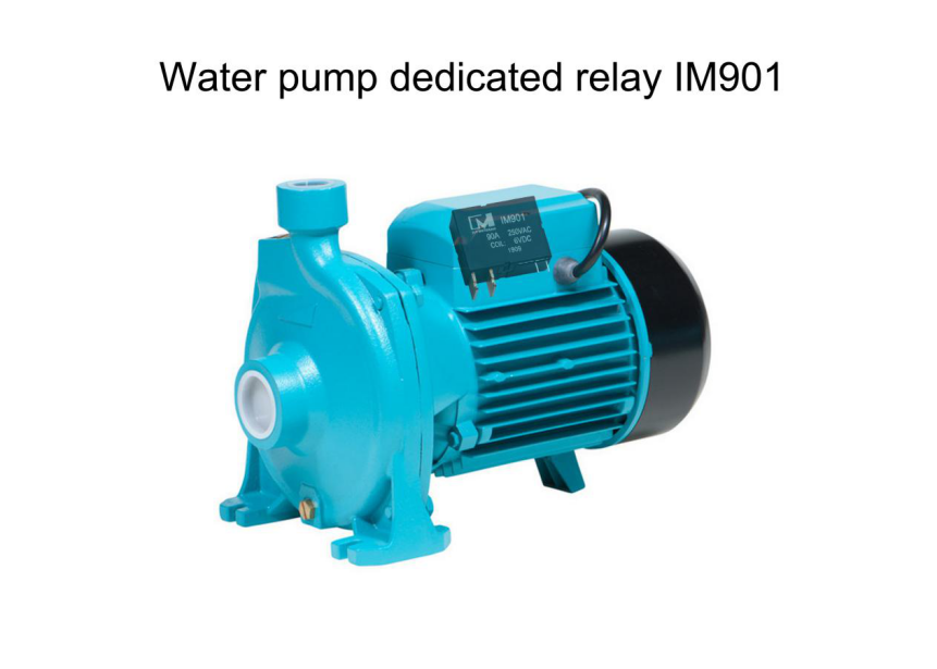 Water Pump Dedicated Relay IM901